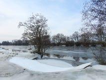 River Minija and nice trees in spring , Lithuania Stock Photo