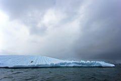Beautiful iceberg or ice floe with a seal, Antarctic ocean Stock Photos