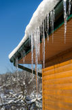 Beautiful Icicle on the snow roof Royalty Free Stock Image