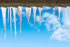 Beautiful icicles Royalty Free Stock Image