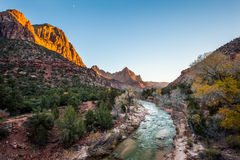 Beautiful iconic scene of The watchman at sunset, Zion National Royalty Free Stock Photos