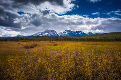 Beautiful Idaho Landscape Sawtooth Range. Panoramic Shot of a Sawtooth Mountain Range taken near Stanley Idaho USA royalty free stock photography