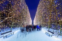 Beautiful illumination at public park of Gdansk. Poland Royalty Free Stock Image