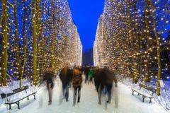 Beautiful illumination at public park of Gdansk Royalty Free Stock Photography