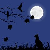 Beautiful illustration with autumn tree and cat Royalty Free Stock Images