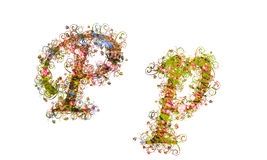 Beautiful illustration of both uppercase and lowercase letters m Stock Image