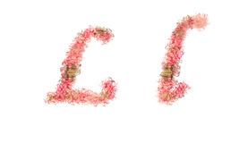 Beautiful illustration of both uppercase and lowercase letters. Royalty Free Stock Images