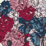 Beautiful illustration with drawn poppy flowers in vintage style Royalty Free Stock Images