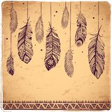 Beautiful illustration of feathers royalty free illustration