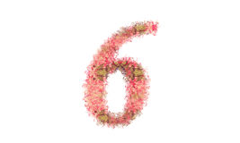 Beautiful illustration of number made of spring flowers. Royalty Free Stock Photos