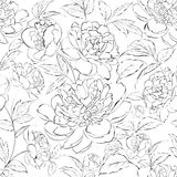 Beautiful illustration of peony flowers. Stock Photo