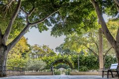 Beautiful image of a bench in a square in the middle of a park with leafy trees. With an arc-shaped climbing plant in the background, a wonderful sunny day in royalty free stock photography