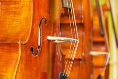 Beautiful image of brand new double basses standing upright in a row stock photos