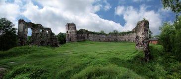 Beautiful image of castle ruins in landscape with blue sky backg. Castke ruins on green grass lawn in Ukraine stock photo