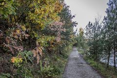 Beautiful image of a path in the woods next to a lake. On a wonderful autumn day in Maasmechelen Belgium royalty free stock photography