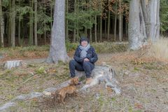 Beautiful image of a woman sitting on a tree stump playing with her dog royalty free stock images
