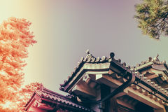 Beautiful  Imperial Palace in Tokyo, japan  ( Filtered image pro Stock Photography