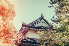 Beautiful  Imperial Palace in Tokyo, japan  ( Filtered image pro Stock Photo