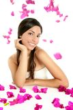 Beautiful indian and bougainvillea flowers Stock Photo