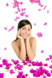 Beautiful indian and bougainvillea flowers Stock Images