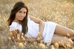 Beautiful indian brunette in a golden field Stock Photography