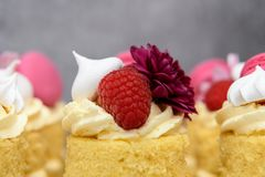 Beautiful individual homemade Birthday Cakes. With meringues raspberries and macaroons royalty free stock photo