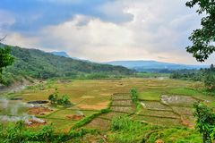 Beautiful of Indonesia royalty free stock image