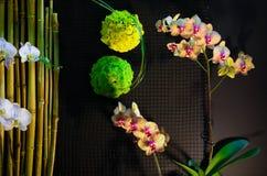 Beautiful indoor flora abstract arrangements. Beautiful flora abstract arrangements at FLORIA event held in Putrajaya, Malaysia Royalty Free Stock Image