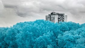 Free Beautiful Infrared Shot Of Thick Trees And A High Building Under The Storm Clouds Royalty Free Stock Photography - 164536947