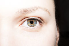 Beautiful insightful look blue green brown woman`s eyes.  Royalty Free Stock Photo