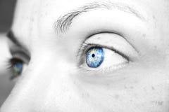 Beautiful insightful look blue woman`s eye stock image
