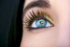 Beautiful insightful look blue  woman`s eyes.  Royalty Free Stock Images