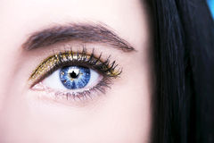 Beautiful insightful look blue  woman`s eyes.  Royalty Free Stock Photos