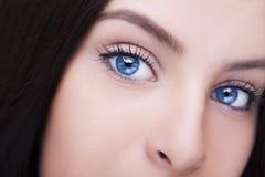 Beautiful insightful look blue woman`s eyes Royalty Free Stock Image