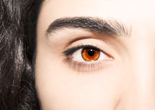 Beautiful insightful look brown eyes.  Royalty Free Stock Photos