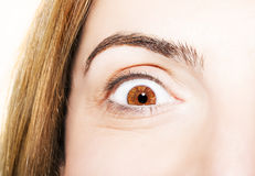Beautiful insightful look brown eyes.  Royalty Free Stock Photo