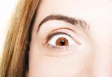 Beautiful insightful look brown eyes Royalty Free Stock Photo
