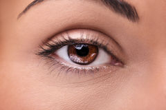 Beautiful insightful look brown woman`s eye. A beautiful insightful look brown woman`s eye Royalty Free Stock Images