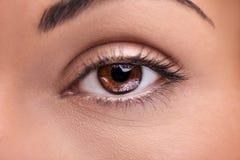 Beautiful insightful look brown woman`s eye. A beautiful insightful look brown woman`s eye Stock Photo