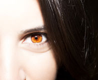 Beautiful insightful look brown woman`s eyes.  Royalty Free Stock Photography