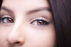 Beautiful insightful look brown woman`s eyes. Beautiful insightful look  woman`s eyes Royalty Free Stock Photography