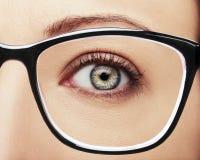 Beautiful insightful look brown woman`s eyes. A beautiful insightful look brown woman`s eyes Royalty Free Stock Photo