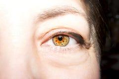 Beautiful insightful look brown woman`s eyes. N Stock Photos