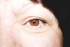 Beautiful insightful look brown woman`s eyes. N Royalty Free Stock Images