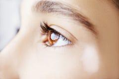 A beautiful insightful look eye. Royalty Free Stock Image