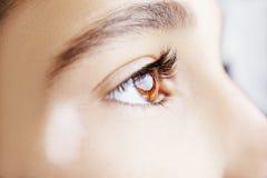 A beautiful insightful look eye. Stock Photo