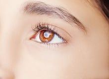 A beautiful insightful look  eye. Royalty Free Stock Photos