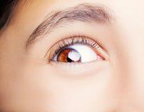 A beautiful insightful look eye. Close up shot Royalty Free Stock Photo