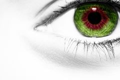 A beautiful insightful look woman eye. Close up shot.  royalty free stock image