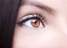 Beautiful insightful look woman`s eye Stock Photo